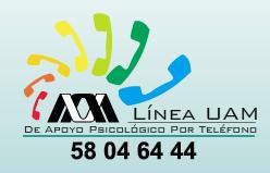 Lineauam
